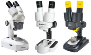 Loupe binoculaire : comment choisir son microscope ?